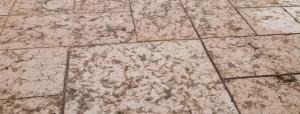 Pavimentazioni soluzioni verdi