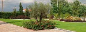 Realizzazione Giardini 10