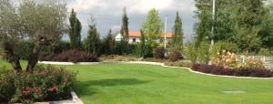 Realizzazione Giardini 12