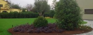 Creazione Giardini 03